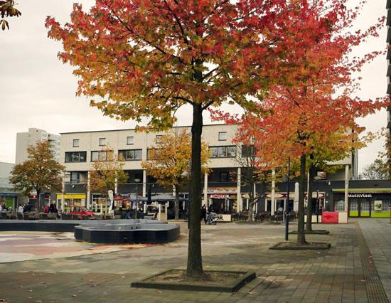 Amsterdam_Boven_t_IJ.jpg